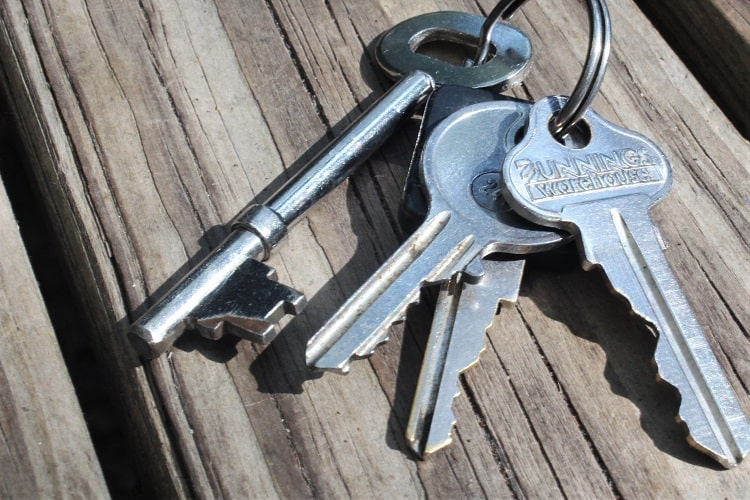 Keys to give to a house sitter.