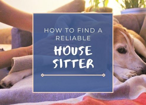 Learn how to find a house sitter and pet sitter.