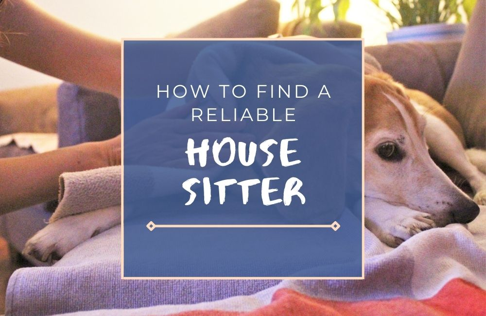 How to Find a Reliable House Sitter: 10-Step Guide