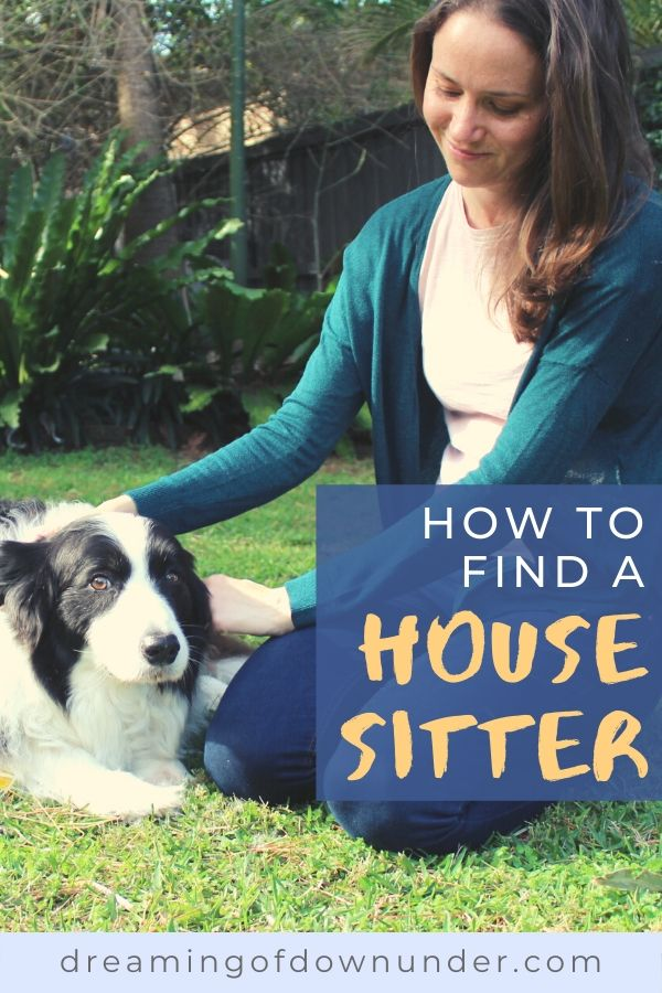 This guide on how to find a reliable house sitter will help you find the right pet sitter for your holidays.