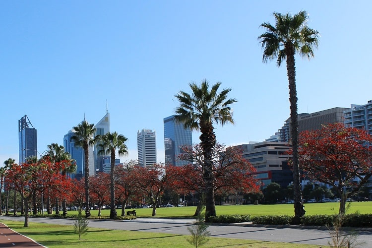 View of Perth CBD from Riverside Drive.
