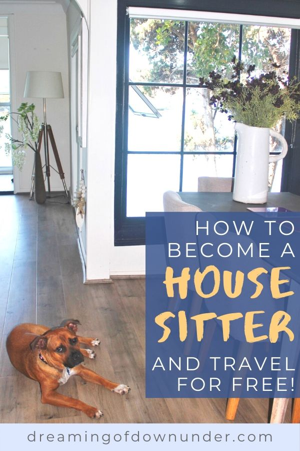 Learn how to start house sitting and get free travel accommodation.
