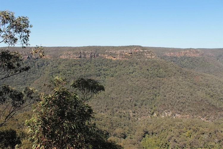 Discover Morton National Prk in the Southern HIghlands NSW.