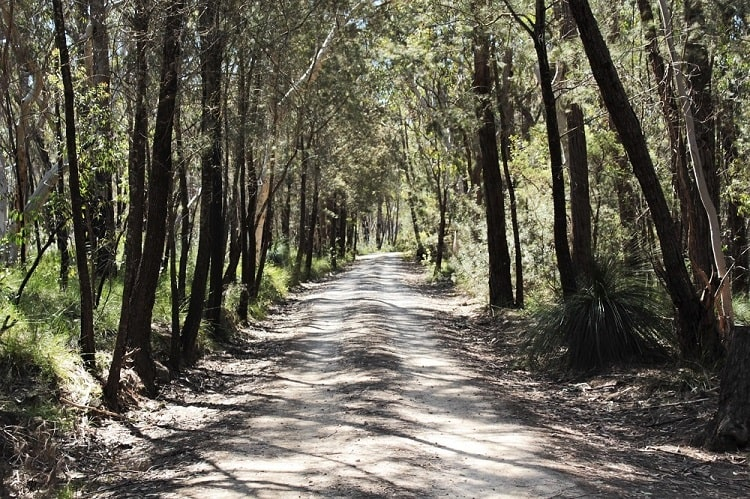 Morton National PArk in the NSW Southern HIghlands Australia.