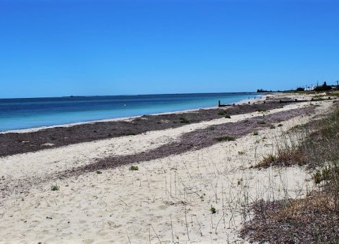 The best things to do in Busselton Western Australia. Enjoy gorgeous beaches, Busselton Jetty Train & Underwater Observatory, pristine forest, whale watching in Geographe Bay, camping & a possum trail!