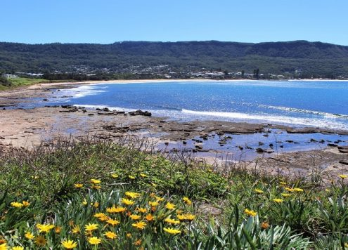 Amazing day trips from Sydney.
