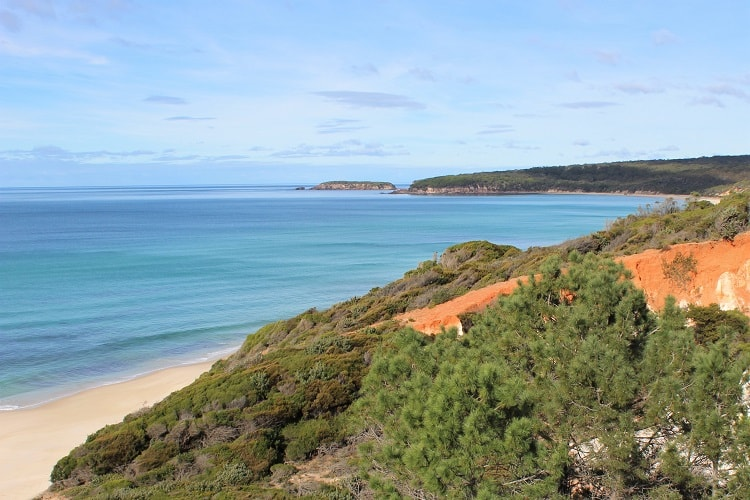 Discover the top attractions in Eden NSW and Ben Boyd National Park. Find out where to go whale watching, walking and enjoy beautiful, tranquil beaches.