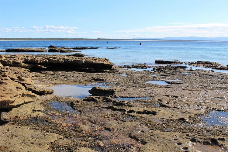 Blog post on things to do at Beecroft Peninsula in Jervis Bay, NSW, Australia.