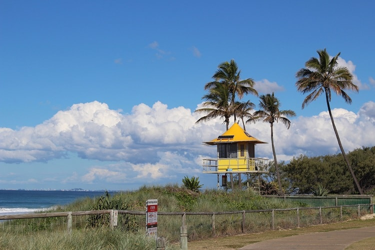 Federation Walk, a free thing to do on this Gold Coast 3 day itinerary.