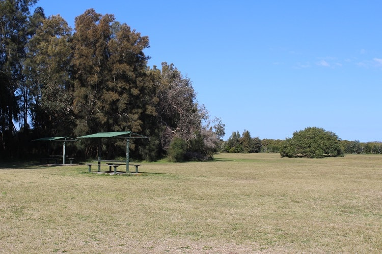 Bonna Point Reserve behind dog-friendly Silver Beach in Kurnell.