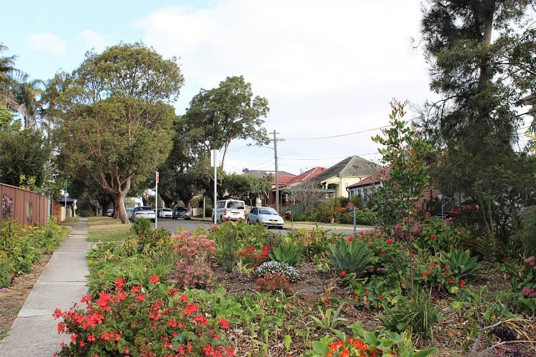 Pretty residential street in Concord - an affordable Sydney suburb for families.