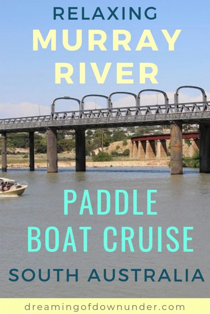 A relaxing Murray River paddle boat cruise in South Australia. The perfect day trip from Adelaide.