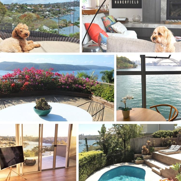 A montage of paid house sits in luxury Sydney homes, taken by professional house sitter and travel blogger, Lisa Bull.
