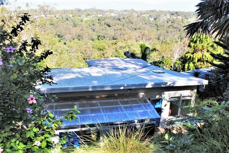 An isolated house sit in Australia, with bushland out the back.