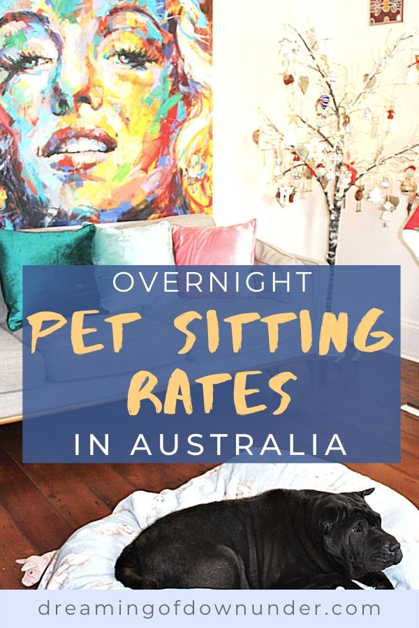 Find out how much to charge for pet sitting in Australia.