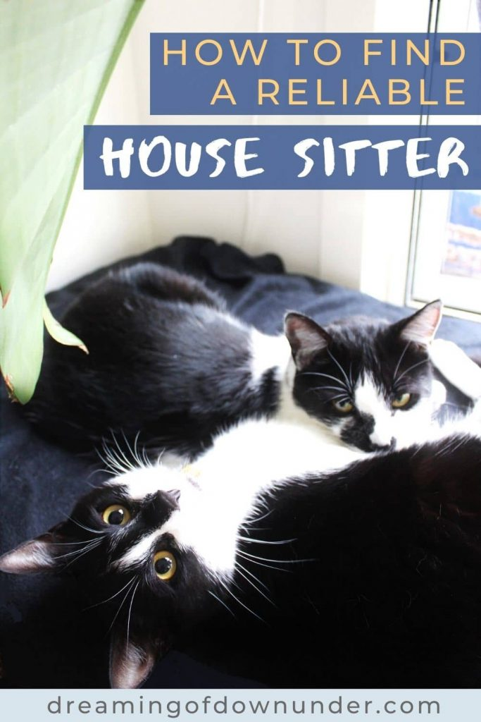 Learn how to find a house sitter with this guide from a professional house and pet sitter in Australia.
