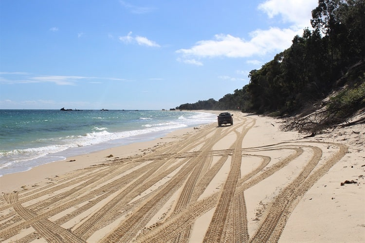 A 4WD driving across the beach at Tangalooma.